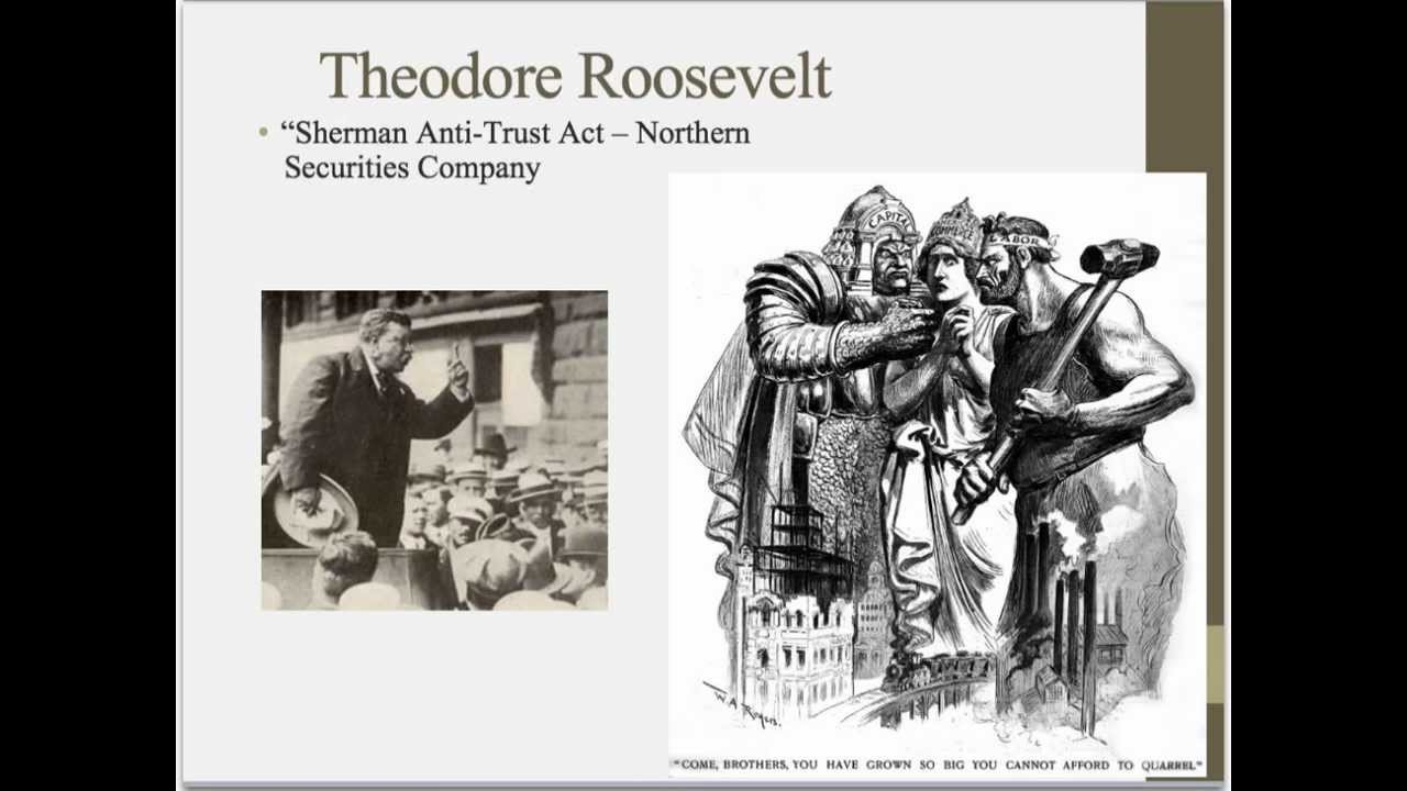 teddy roosevelt progressive era