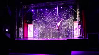 Unleashed Pole Dancing Competition 2015