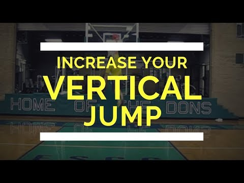 the-declaration-of-vertical-jump-workout