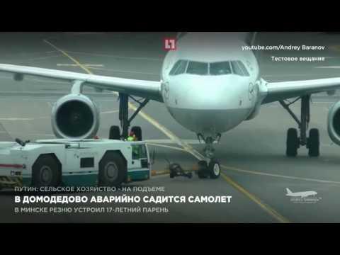 Такси в аэропорт Домодедово, Шереметьево и Внуково от 650