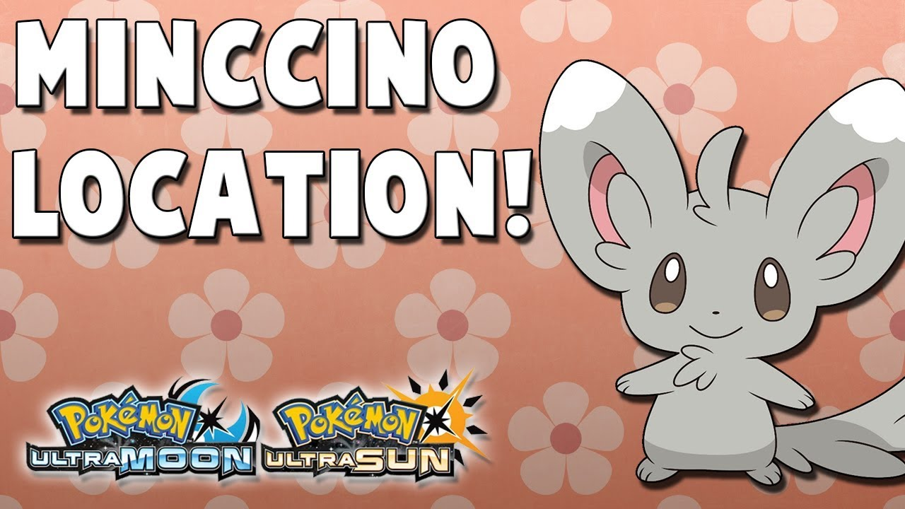 where to catch minccino 266 in pokemon ultra sun and ultra moon
