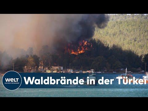 TÜRKEI IN FLAMMEN: Vier Tote - So gefährlich nah kommen die Feuer den Urlaubern | WELT Thema