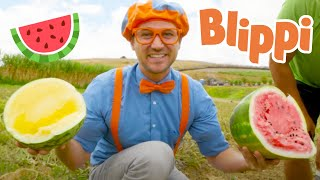 Blippi Visits Tanaka Farm | Healthy Eating Videos For Kids | Educational Videos For Kids
