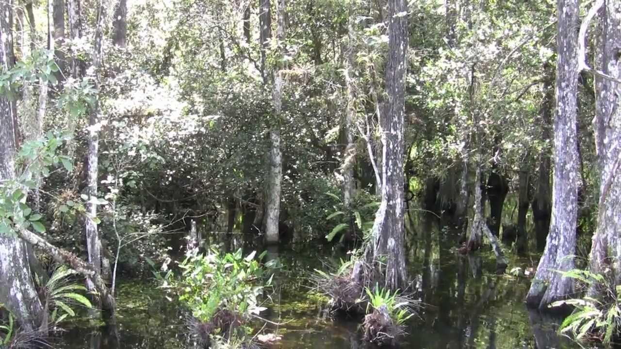 Florida Oktober