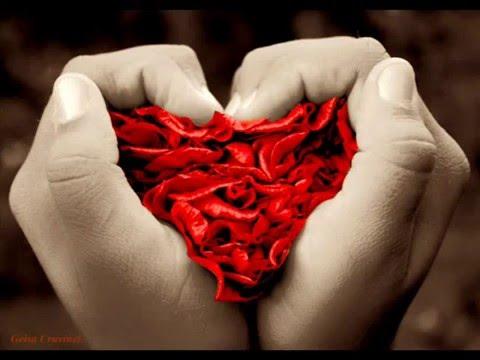 O Amor Sempre Vence!