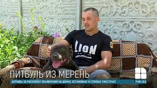 Боец ММА Михай Сырбу рассказал о своей слабости