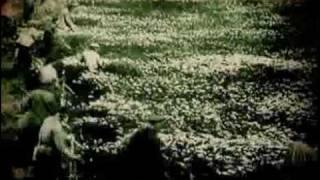 Молочай -  Точить косу [official video]