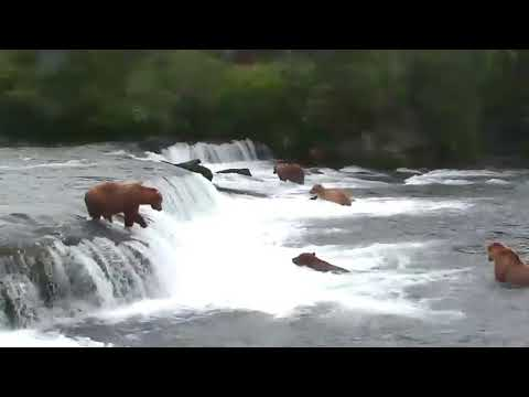 Katmai National Park, Alaska - Brooks Falls