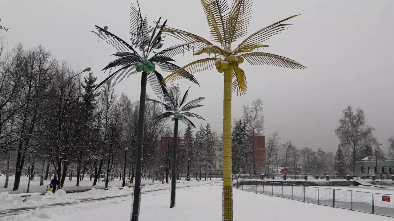 Хотели снега-получили.19 декабря,после снегопада
