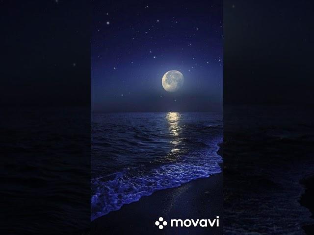 Изображение предпросмотра прочтения – РиммаСабирова читает произведение «Вечером синим, вечером лунным...» С.А.Есенина