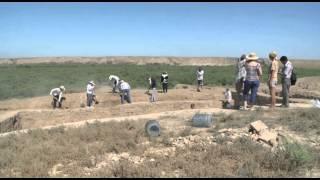 Южный Казахстан. Находки археологов