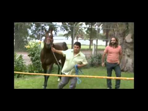 El Domador De Caballos · Atila from YouTube · Duration:  45 minutes 38 seconds