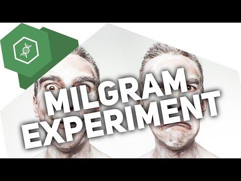 Das Milgram-Experiment – Verhaltensbiologie 4 ● Gehe Auf SIMPLECLUB.DE/GO & Werde #EinserSchüler