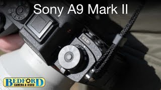 Sony A9 II Overview: Fast and Durable