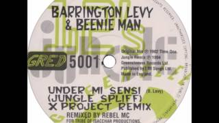 Barrington Levy - Under Mi Sensi [Jungle Spliff Mix]