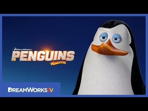 Meet Kowalski  PENGUINS OF MADAGASCAR