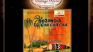 Conjunto Los Cariñosos -- Poco Pelo (Cha Cha Cha) (VintageMusic.es)