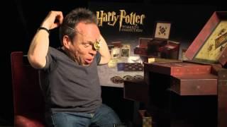 Harry Potter Wizard