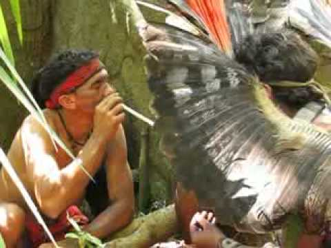 Shamans in the Brazilian Amazon taking Sacred Rapé - Medicinal Snuff