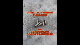 Опыт в зимней рыбалке на Беловском водохранилище