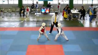 台北市國小教育盃跆拳道