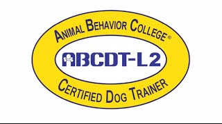 What Employers Look For In Dog Trainers | Abc