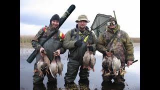 охота на утку с пневматикой хатсан 125 hunting with Pneumatics hatsan 125