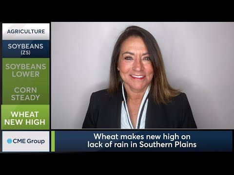 October 16 Grains Commentary: Virginia McGathey