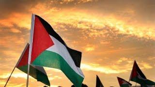 Bayrakların Tarihi: Filistin