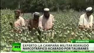 Soldados británicos en Afganistán involucrados en narcotráfico