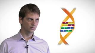 MOOC côté cours : La transcription de l'ADN