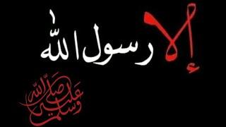 #الا_رسول_الله_ﷺ//لا يهان النبي ﷺ في أمة إلا أهانهاا الله//ارواحناا فداك يارسول الله ﷺ