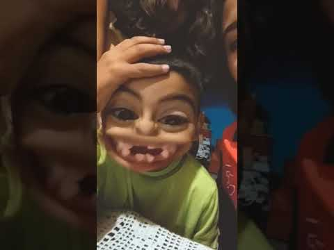 Chimuelo, ¿DÓNDE.. Video de risa, deja tu like