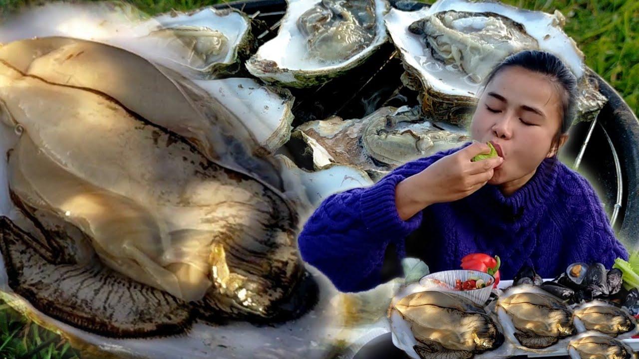Download Ep112 ของฟรี‼️ย่างหอยนางรม นึ่งหอยแมลงภู่ บุญธรรมช่วยก่อไฟย่างหอย#แคมป์ปิ้ง #kppchannel
