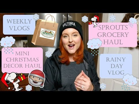 weekly-vlogs-|-rainy-day-shopping-|-grocery-haul-|-christmas-decor-haul-|-sirena-grace-celes-vlogs