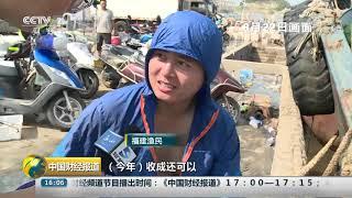 [中国财经报道]开渔归来鱼满仓 南海水产新鲜上市| CCTV财经