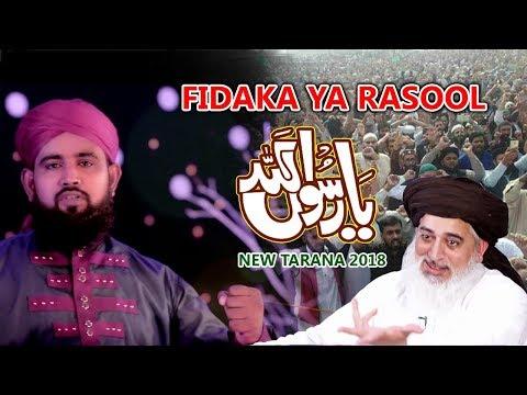 New Tarana Khatm-E-Naboat | Ya Rasool Allah Ham Tere Wafadar | Hasan Imam Qadri New 2018