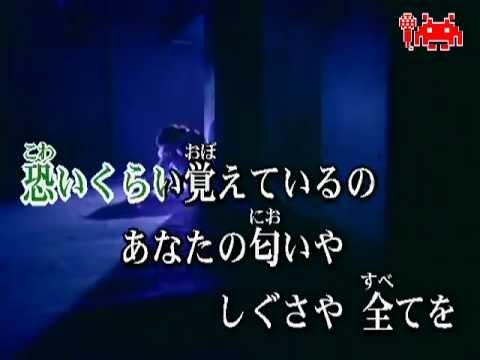 HY 366 Nichi Karaoke