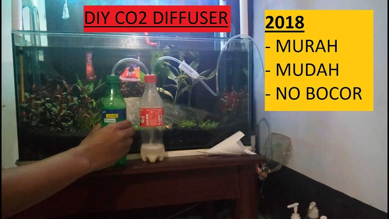 CARA MEMBUAT CO2 Diffuser AQUASCAPE 2018 - YouTube