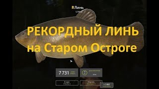 Русская рыбалка 4 - озеро Старый Острог - История с трофейными линями