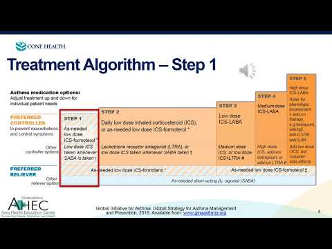 UNCG 2020 Asthma Lecture - GINA 2019 Algorithm