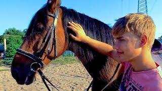 Первый урок верховой езды / The first riding lesson