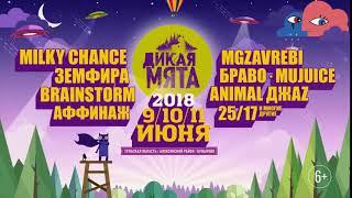 Дикая Мята 2018 Афиша 5сек (6+)