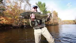 Salmon river USA