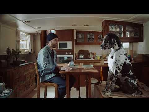 Pinterest UK – Dog DIY Ideas (30s)