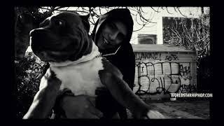 Смотреть клип Shoreline Mafia X Sob X Yhung T.O. - Persian Rugs Type Beat