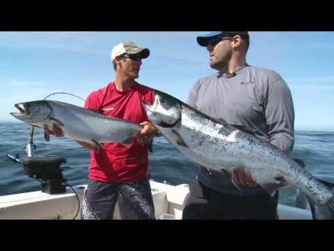 "Sportfishing Adventures S03E04 ""The Rematch"""