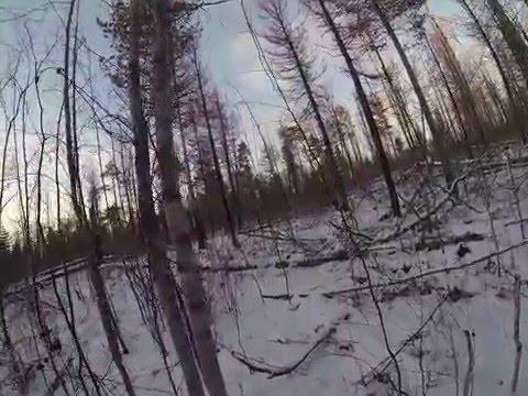 С какими природными регионами граничит Западно Сибирская