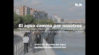 El Agua camina por nosotros Día Mundial del Agua 2020 - Sesión digital a través de Zoom