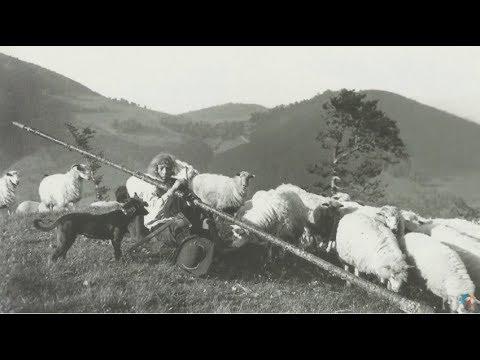 La un pas de România: Tradiție și istorie în Moravia și Banat (@TVRi)
